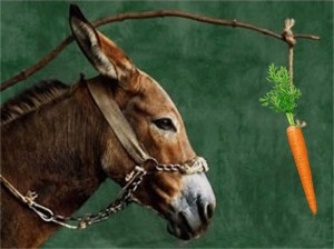 donkey-and-carrot